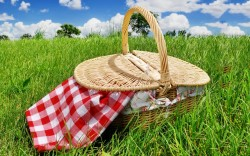 Wild Goose On The Fly—Picnic Baskets Galore #1