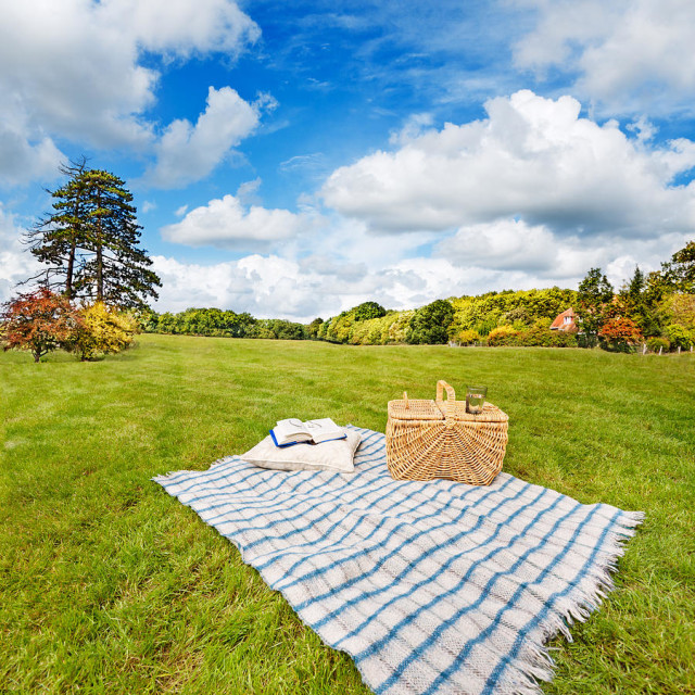 picnic-blanket-and-basket-in-sunny-field-jo-ann-snover